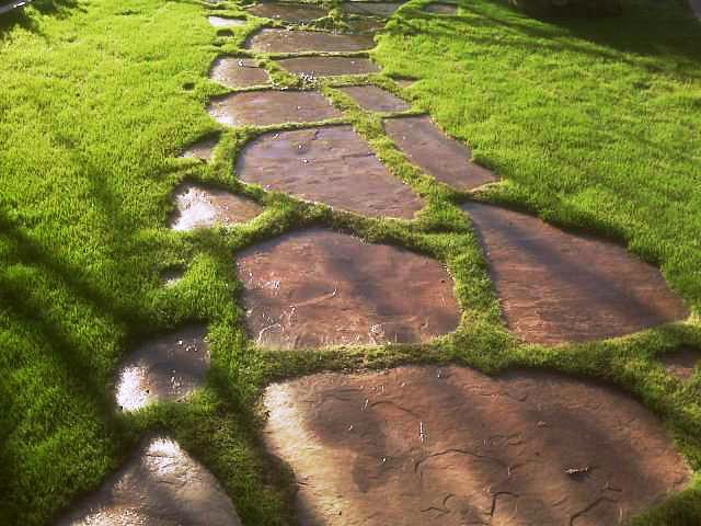 Самые прочные садовые дорожки