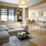 идеи дизайна кухни-гостиной в чстном доме
