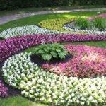 Разновидности цветников